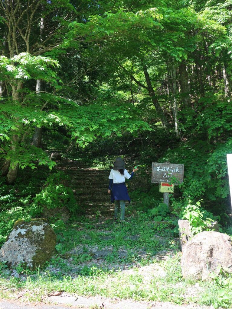 百滝コース入口